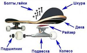 Как собрать скейт?